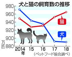 犬と猫の飼育数